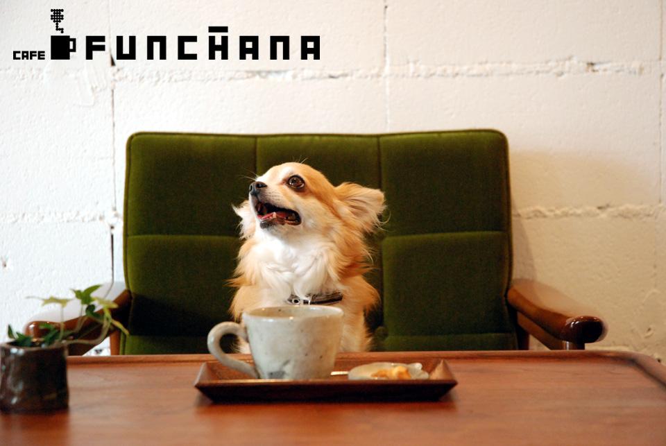 CAFE FUNCHANA  ~ カフェ ファンチャーナ ~